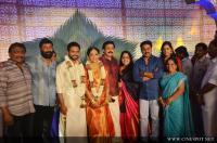 Vinayan Daughter Wedding photos (87)