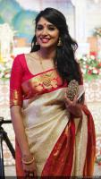 Vinayan Daughter Wedding photos (9)