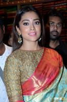 Shriya Saran Latest Gallery (23)
