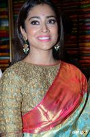 Shriya Saran Latest Gallery (24)