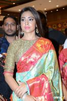 Shriya Saran Latest Gallery (3)