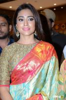 Shriya Saran Latest Gallery (4)