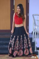 Nishi Ganda at Tick Tock Audio Launch (61)