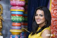 Shraddha Srinath New Photos (33)
