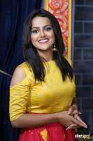 Shraddha Srinath New Photos (36)