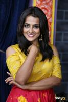 Shraddha Srinath New Photos (39)