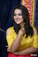 Shraddha Srinath New Photos (40)
