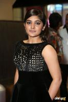 Niveda Thomas at Filmfare Awards 2017 (11)