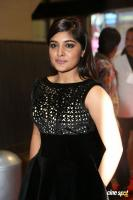 Niveda Thomas at Filmfare Awards 2017 (13)