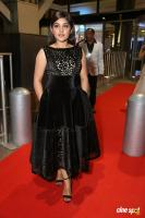 Niveda Thomas at Filmfare Awards 2017 (8)