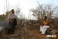 Tiyaan Photos (14)