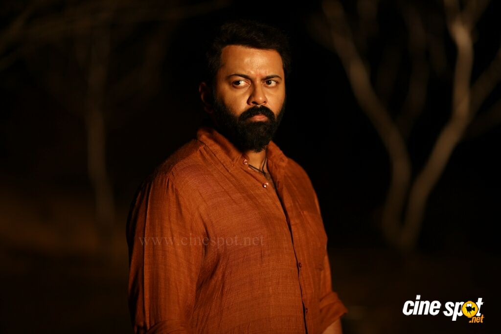 Tiyaan Photos (15)