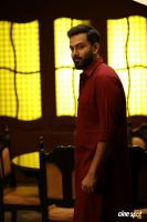 Tiyaan Photos (16)