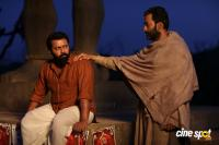 Tiyaan Photos (20)