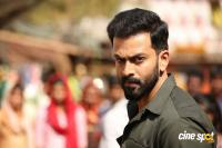 Tiyaan Photos (21)