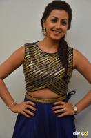 Nikki Galrani at Maragatha Naanayam Thanks Giving Press Meet (3)