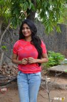 Vijayalakshmi at Pandigai Movie Press Meet (2)