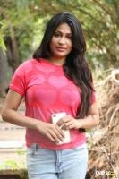 Vijayalakshmi Agathiyan at Pandigai Press Meet