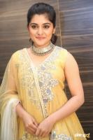 Niveda Thomas at Ninnu Kori Pre Release Function (19)