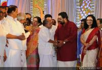 Sabarinathan and Divya Iyer wedding reception (51)