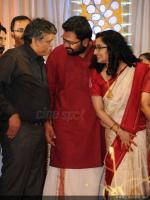 Sabarinathan and Divya Iyer wedding reception (85)