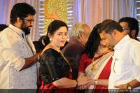 Sabarinathan and Divya Iyer wedding reception (15)