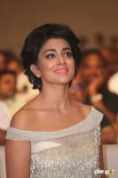 Shriya Saran at Nakshatram Audio Launch (20)