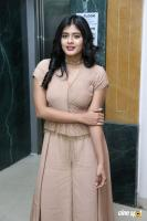 Hebah Patel at Santosham Awards 2017 Curtain Raiser Press Meet (1)