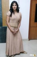 Hebah Patel at Santosham Awards 2017 Curtain Raiser Press Meet (10)
