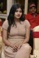 Hebah Patel at Santosham Awards 2017 Curtain Raiser Press Meet (13)