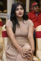 Hebah Patel at Santosham Awards 2017 Curtain Raiser Press Meet (14)