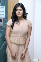 Hebah Patel at Santosham Awards 2017 Curtain Raiser Press Meet (2)