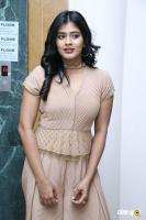 Hebah Patel at Santosham Awards 2017 Curtain Raiser Press Meet (3)