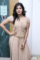 Hebah Patel at Santosham Awards 2017 Curtain Raiser Press Meet (5)