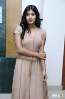 Hebah Patel at Santosham Awards 2017 Curtain Raiser Press Meet (6)