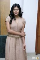 Hebah Patel at Santosham Awards 2017 Curtain Raiser Press Meet (7)