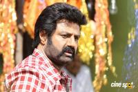 Balakrishna Latest Gallery (1)