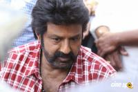 Balakrishna Latest Gallery (11)