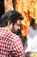 Balakrishna Latest Gallery (4)