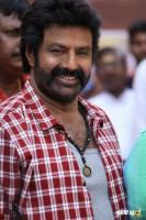 Balakrishna Latest Gallery (5)