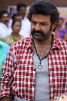 Balakrishna Latest Gallery (7)