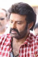 Balakrishna Latest Gallery (9)