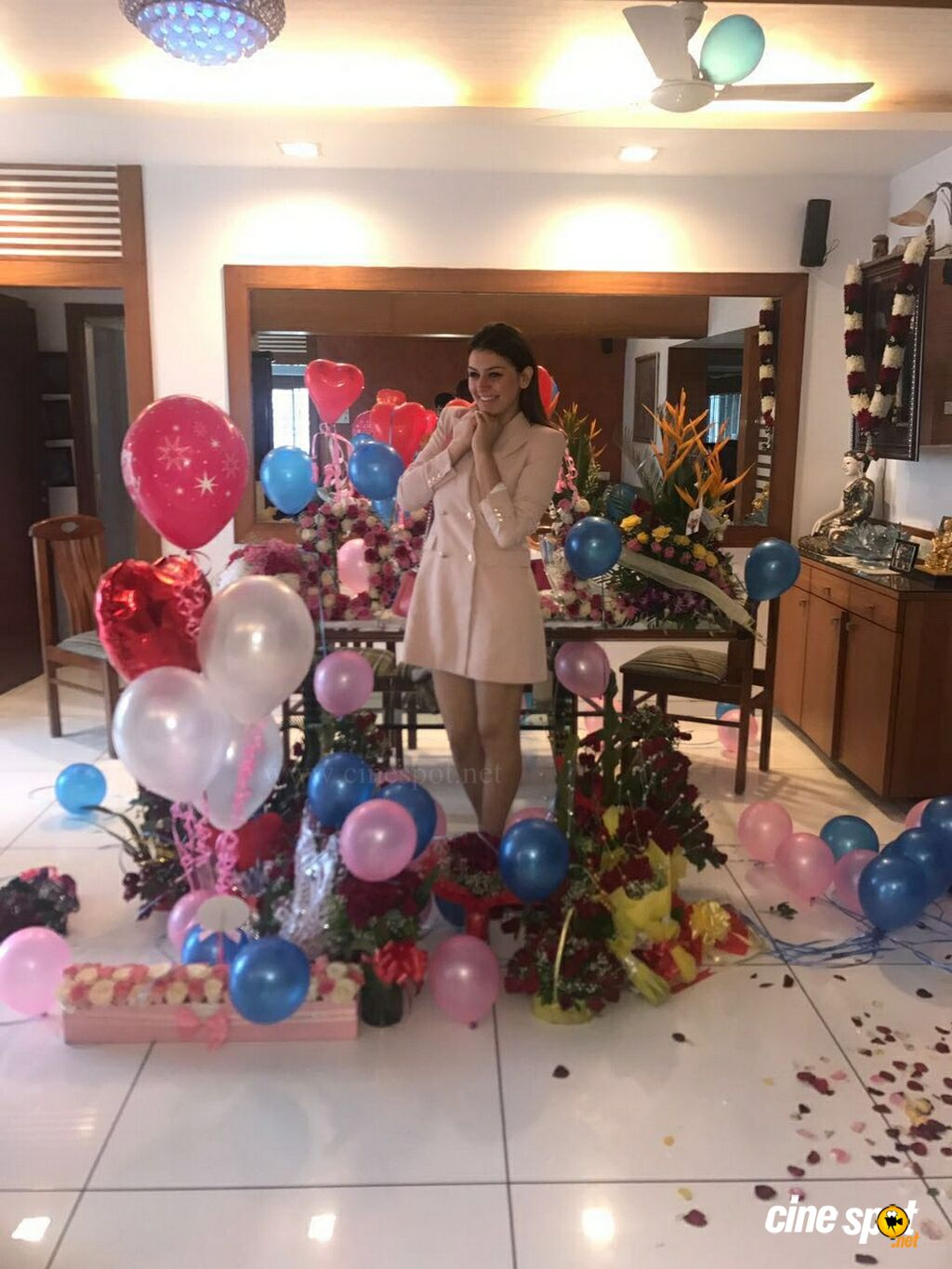Hansika Motwani Birthday Celebrations 2017 (1)