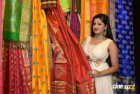 Lipsa Mishra Inaugurates Silk India Expo (16)