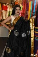 Lipsa Mishra Inaugurates Silk India Expo (21)