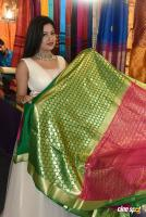 Lipsa Mishra Inaugurates Silk India Expo (22)