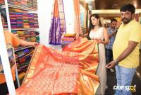 Lipsa Mishra Inaugurates Silk India Expo (23)