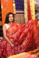 Lipsa Mishra Inaugurates Silk India Expo (8)