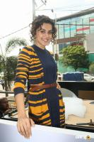Taapsee Pannu New Pics (19)