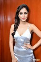 Priya Banerjee at Social Web Series Press Meet (12)